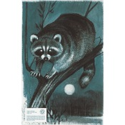 "Maple Leaf Authentic Animal Faces, 12""x18"", Raccoon"