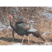 Delta McKenzie Tru-Life Eastern Series Small Game - Turkey