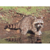 Delta McKenzie Tru-Life Eastern Series Small Game - Raccoon