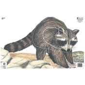 Maple Leaf NFAA Animal Faces, Group 3, Raccoon