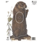 Maple Leaf NFAA Animal Faces, Group 4, Woodchuck
