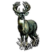 "LVE Large Camo Decal - Deer, 6""x11"""