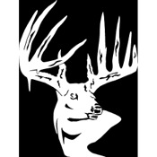 LVE Typical Whitetail Decal, Std, White