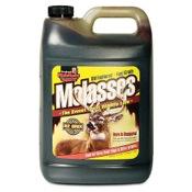 Evolved Habitats Molasses, 1gal