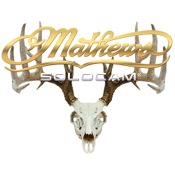 "DWD Mathews Solocam Skull Decal, 10""x8"", Gold"