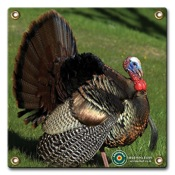 "Arrowmat Foam Rubber Target Face - Turkey, 17""x17"""
