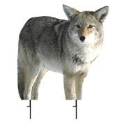 "Montana Kojo Coyote Decoy, 21""x22"", Predator"