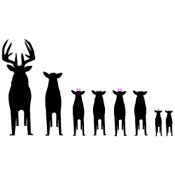 "LVE Deer Family Decal, 5""x7"", White, Standard"