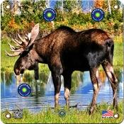 """Arrowmat Foam Rubber Target Face - Moose, 17""""x17"""""""