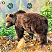 "Arrowmat Foam Rubber Target Face - Grizzly Bear, 17""x17"""