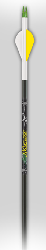 Carbon Express Mutiny Arrows - 250 Spine